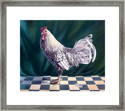 Hamburger Rooster Framed Print