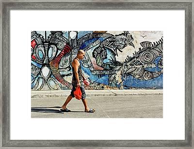 Hamel Street Framed Print