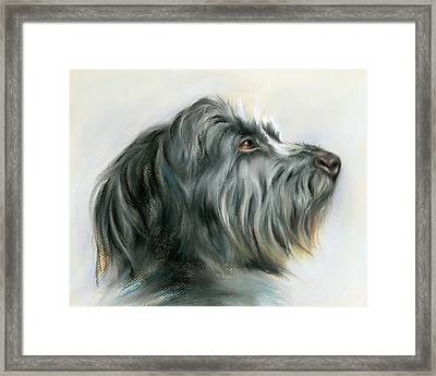 Hamish The Wolfhound Framed Print by MM Anderson