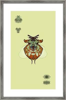 Hammerhead Ladybug Specimen Framed Print