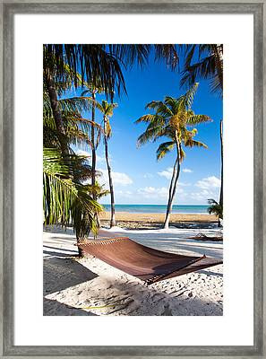 Hammock In Paradise Framed Print by Adam Pender