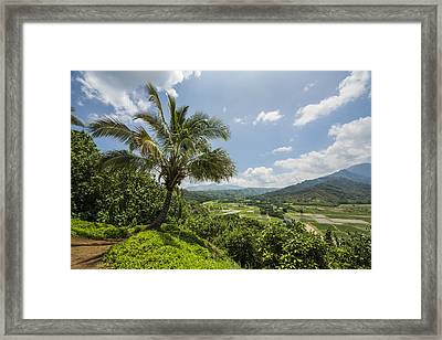 Hanalei Overlook Framed Print by Jon Glaser