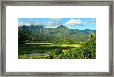 Hanalei Valley Rainbow Framed Print by Stephen Vecchiotti