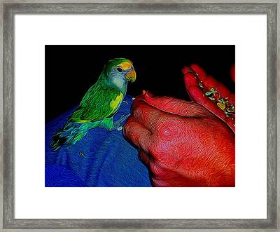 Hand Fed In Abstract Framed Print by Kristalin Davis