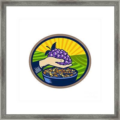 Hand Holding Grapes Raisins Oval Woodcut Framed Print by Aloysius Patrimonio