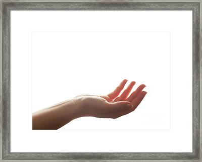 Hand In Gesture Of Holding, Giving. Strong Backlight, Isolated On White Framed Print