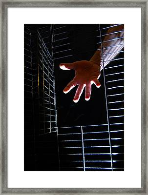 Hand Of Man Framed Print by Kirk Griffith