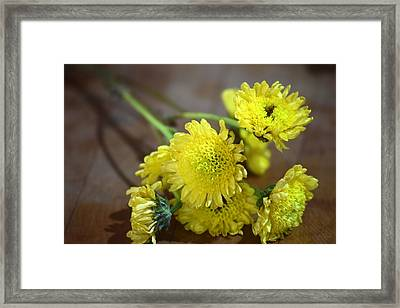 Framed Print featuring the photograph Handful For You by Deborah  Crew-Johnson