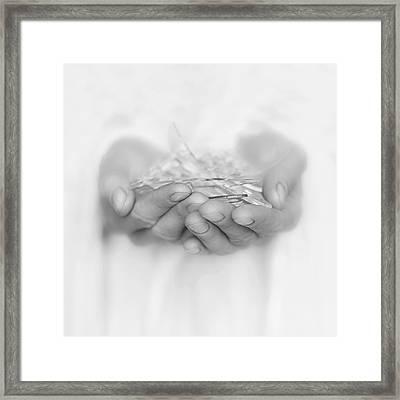 Handfull Of Shards Framed Print