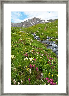 Framed Print featuring the photograph Handie's Peak And Alpine Meadow by Cascade Colors