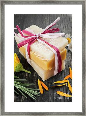 Handmade Soaps With Herbs Framed Print by Elena Elisseeva