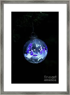 Handpainted Ornament 001 Framed Print