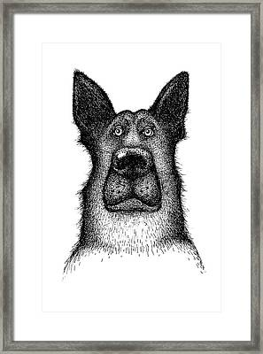 Hands Drawing A Portrait Of A Dog - Sheep Dog Framed Print