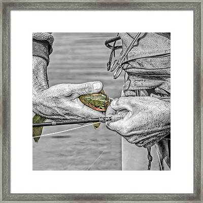 Hands Of A Fly Fisherman Monochrome Select Color Framed Print by Jennie Marie Schell
