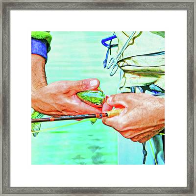 Hands Of A Fly Fisherman Retro Colors Framed Print