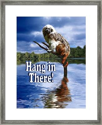 Hang In There Framed Print by Gravityx9  Designs