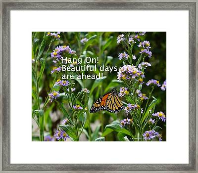 Hang On Butterfly Framed Print by Kathy Barney