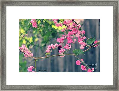 Framed Print featuring the photograph Hang On by Megan Dirsa-DuBois
