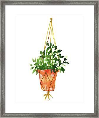 Hangin' Out Terra-cotta Planter  Framed Print