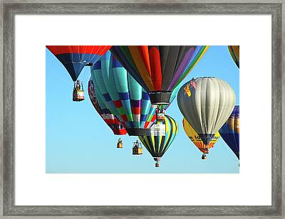 Hanging Around Framed Print by Marie Leslie