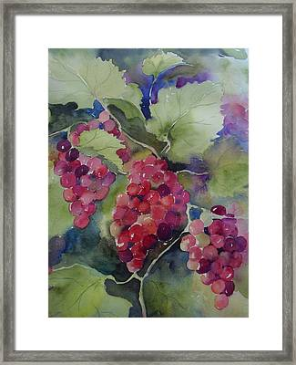 Hanging Around Framed Print by Sandra Strohschein