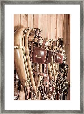 Hanging Bridles Framed Print by Pamela Williams