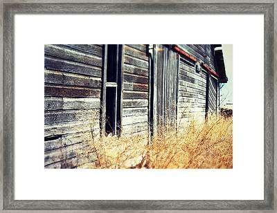 Hanging By A Bolt Framed Print by Julie Hamilton