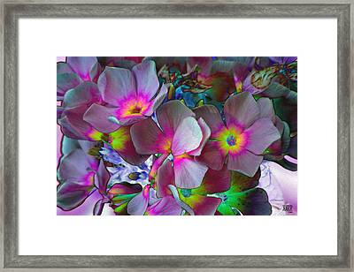Hanging Color Framed Print by Michele Caporaso
