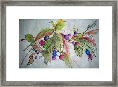 Framed Print featuring the painting Hanging Crabapples by Debbi Saccomanno Chan