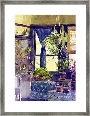 Hanging Ferns Framed Print by Donald Maier