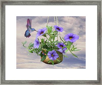Hanging Flowers And Hummingbird Framed Print