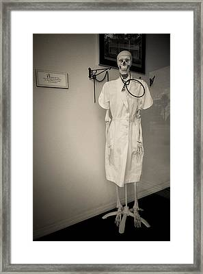 Hanging In There Framed Print by Rudy Umans