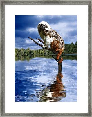 Hanging On Framed Print by Gravityx9   Designs
