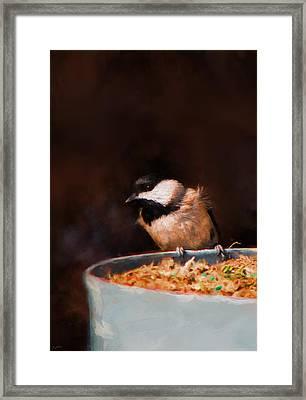 Hanging On The Edge Framed Print by Jai Johnson