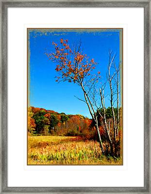 Framed Print featuring the photograph Hanging On To Autumn by Joan  Minchak