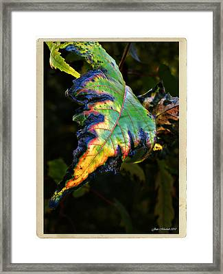 Framed Print featuring the photograph Hanging Out by Joan  Minchak