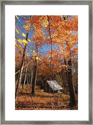 Hannah Cabin Framed Print by Alan Lenk