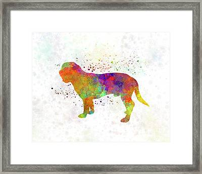 Hanoverian Scenthound In Watercolor Framed Print