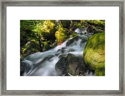Hanson Falls Framed Print by Larry Ricker