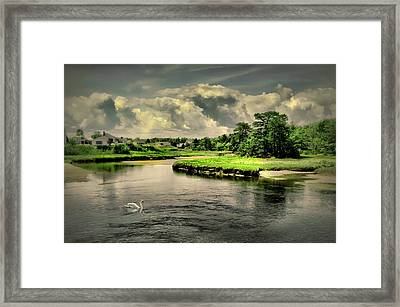 Gooch's Creek Framed Print by Diana Angstadt