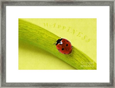 Happiness Framed Print by Angela Doelling AD DESIGN Photo and PhotoArt