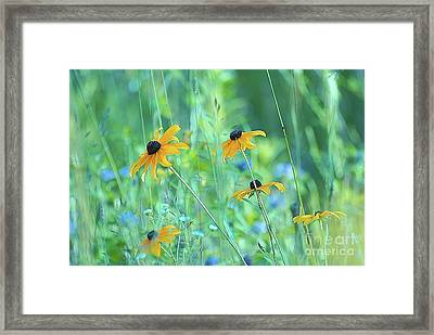 Happiness Is In The Meadows - 111 Framed Print