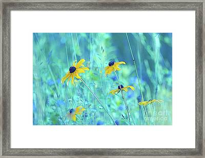 Happiness Is In The Meadows - A111 Framed Print
