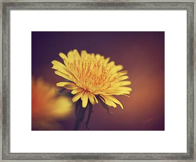 Happiness Is Framed Print