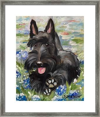 Happiness Is...  Framed Print by Mary Sparrow