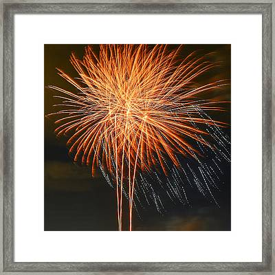 Happiness Framed Print by Michael  Scott