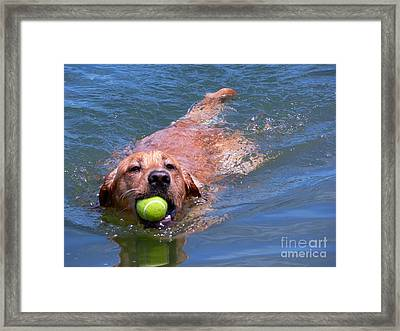 Framed Print featuring the photograph Happiness by Terri Thompson