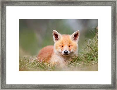 Happy Baby Fox Framed Print by Roeselien Raimond