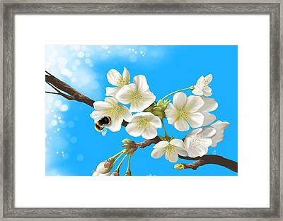 Happy Bee Framed Print by Veronica Minozzi