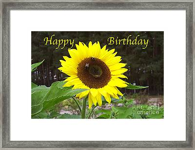 Framed Print featuring the photograph Happy Birthday - Greeting Card - Sunflower by Sascha Meyer